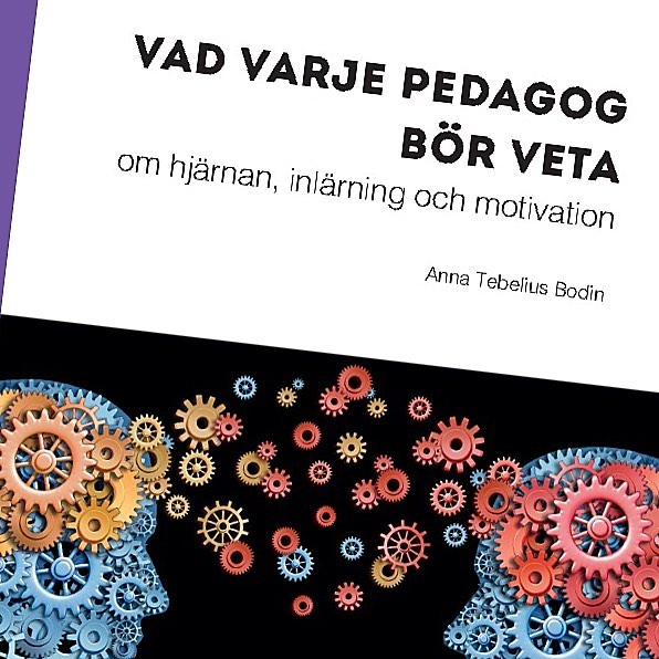 Ny bok ute 15 juni!